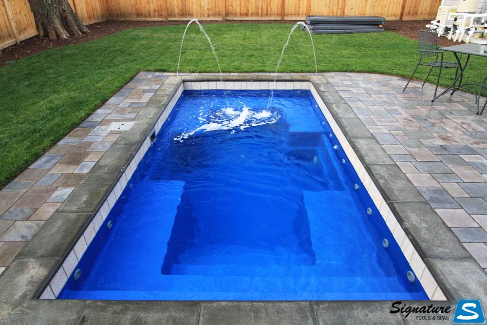 Palladium plunge model pool from leisure pools signature for Fiberglass pool manufacturers